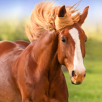 The Horse MOD Unlimited Money